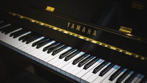 visit a piano showroom